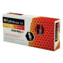 JALEA REAL CON GINSENG VITAMINADA BEBIBLE 10 ML 20 AMP FARMAVITAL